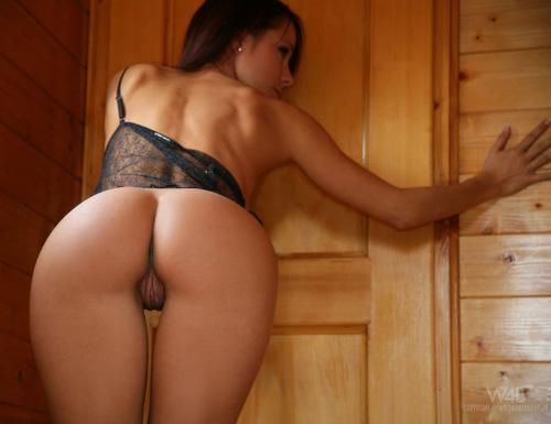 Playboy playmate nikki leigh nude